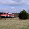 pr-sa110-13pozegnaniesa110_grotnikidrawskie_2012-04-14_ts_07-copy